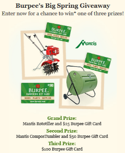 Burpee-Sweepstakes