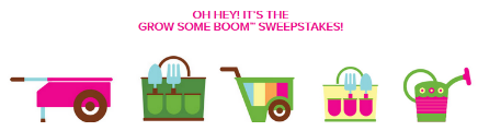 Angies-Boomchickapop-Sweepstakes