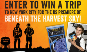 Terra-Chips-Sweepstakes