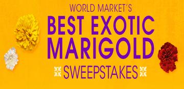 World-Market-Sweepstakes