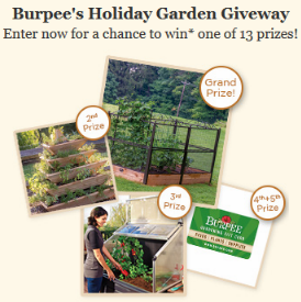 Burpees-Sweepstakes