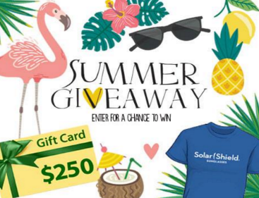 2017 Dioptics Summer Giveaway Win A 250 Visa Gift Card