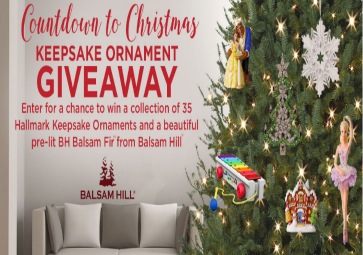 Hallmark channel countdown to christmas sweepstakes for kids