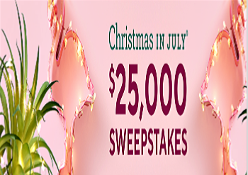 Christmas In July 2019 Qvc QVC Christmas in July® Sweepstakes & IWG – Win $25,000